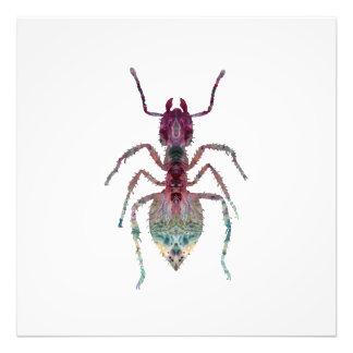 Ameisen-Kunst Fotodruck