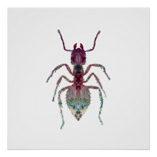 Ameisen-Kunst Poster