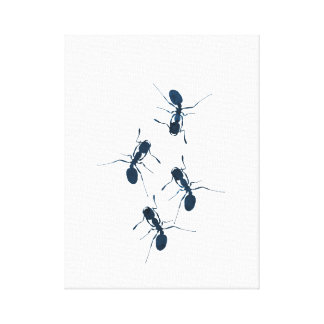 Ameisen Leinwanddruck