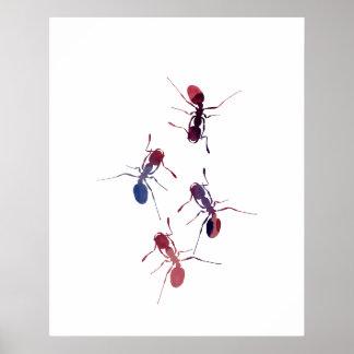 Ameisen Poster