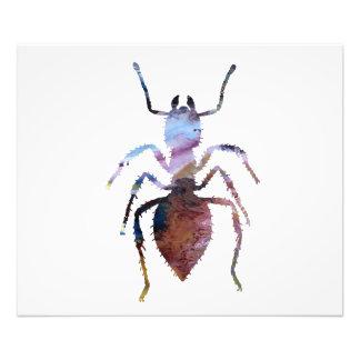 Ameisenkunst Fotodruck