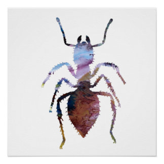 Ameisenkunst Poster
