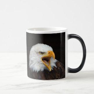 AMERICAN EAGLE - Foto: Jean-Louis Glineur Verwandlungstasse
