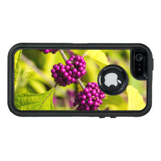 Amerikaner Beautyberry OtterBox iPhone 5/5s/SE Hülle