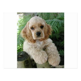 Amerikaner-Cocker spaniel-Hund und der grüne Farn Postkarte