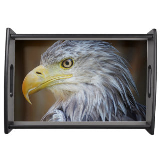 Amerikaner-Eagle-Vogel Tablett