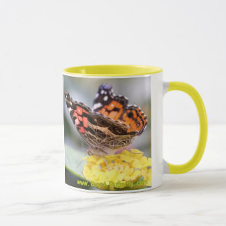 Amerikaner gemalte Dame Butterfly Lifecycle Coffee Tasse