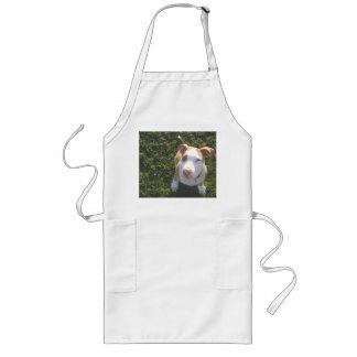 Amerikaner PitBull Terrier, der oben schaut Lange Schürze