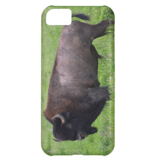 Amerikaner Plains Büffel-Bison iPhone 5 Fall iPhone 5C Hülle