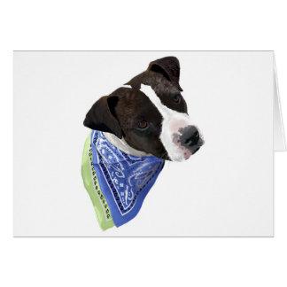 Amerikaner Staffordshire Terrier-Aggie Karte