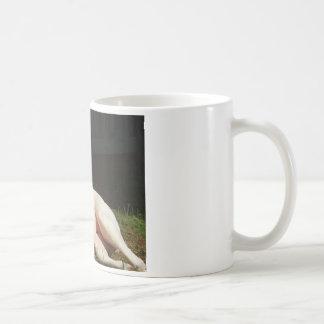 amerikanische Bulldogge Kaffeetasse