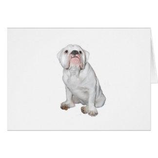 Amerikanische Bulldogge - weißes #1 Karte