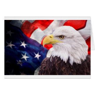 Amerikanische Flagge und Adler 2