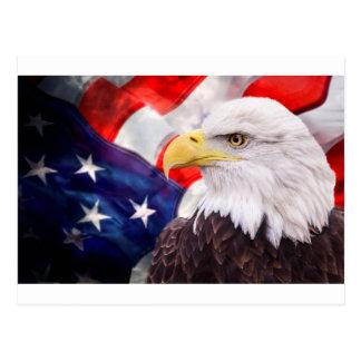 Amerikanische Flagge und Adler 2 Postkarte