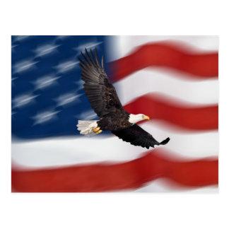 Amerikanische Flagge und Adler Postkarten