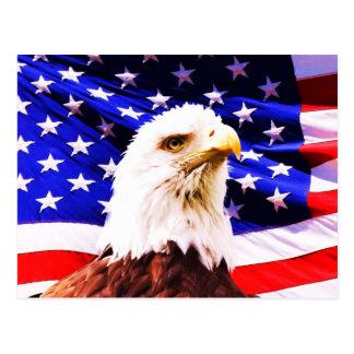 Amerikanische Flagge und Eagle-Postkarte Postkarte