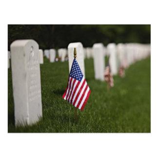 Amerikanische Flaggen auf Gräbern der Postkarte