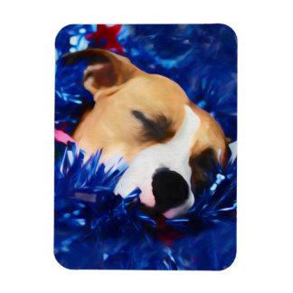 Amerikanische Pitbull Terrier USA patriotischer Magnet