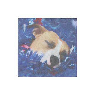 Amerikanische Pitbull Terrier USA patriotischer Stein-Magnet