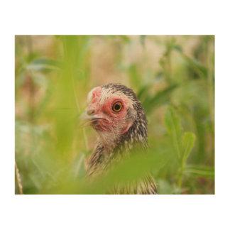 Amerikanische Spiel-Henne Holzwanddeko