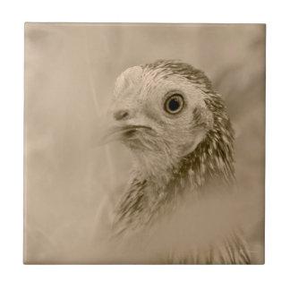 Amerikanische Spiel-Henne Keramikfliese