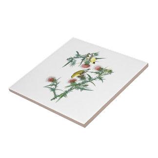 Amerikanische Vögel Goldfinch-Johns Audubon von Keramikfliese