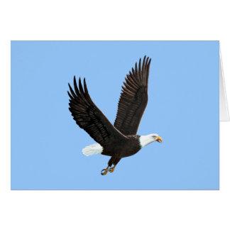 Amerikanische Weißkopfseeadler-Karte