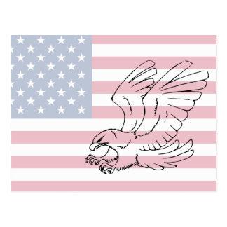 Amerikanische Weißkopfseeadler-Postkarte Postkarte