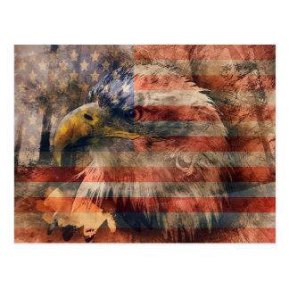 Amerikanischer Adler Postkarte