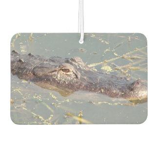 Amerikanischer Alligatorluft Freshner Lufterfrischer