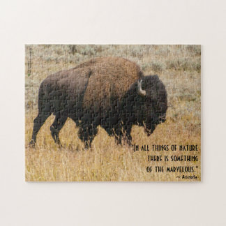 Amerikanischer Bison, der in der Puzzle