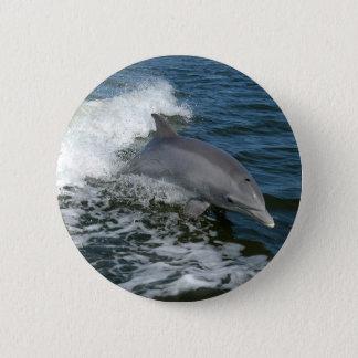 Amerikanischer Bottlenose-Delphin Runder Button 5,1 Cm