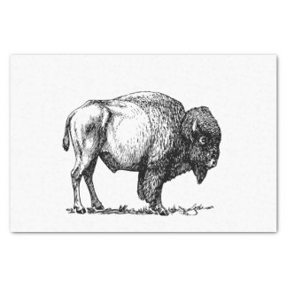 Amerikanischer Büffel-Bison Seidenpapier