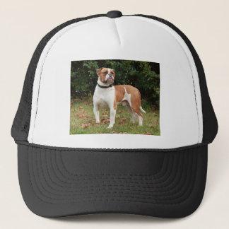 Amerikanischer Bulldoggen-Hund Truckerkappe