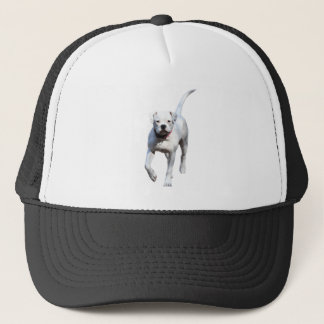 Amerikanischer Bulldoggen-Welpe Truckerkappe