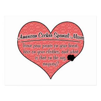 Amerikanischer Cockerspaniel mischt Postkarte