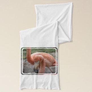 Amerikanischer Flamingo Schal