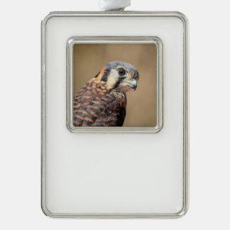 Amerikanischer Kestrel Rahmen-Ornament Silber