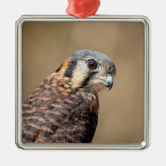 Amerikanischer Kestrel Silbernes Ornament