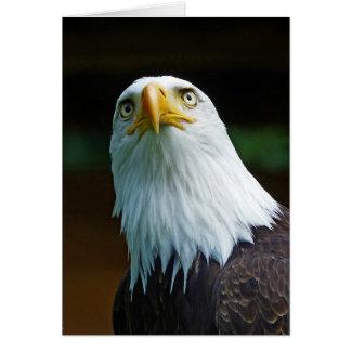 Amerikanischer Weißkopfseeadler-Kopf Grußkarte