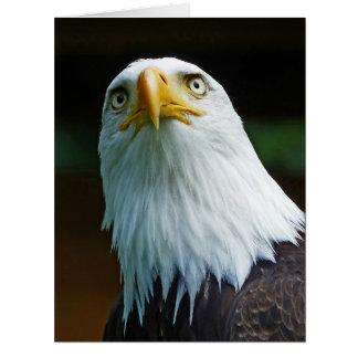 Amerikanischer Weißkopfseeadler-Kopf Riesige Grußkarte