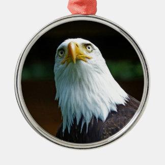 Amerikanischer Weißkopfseeadler-Kopf Rundes Silberfarbenes Ornament