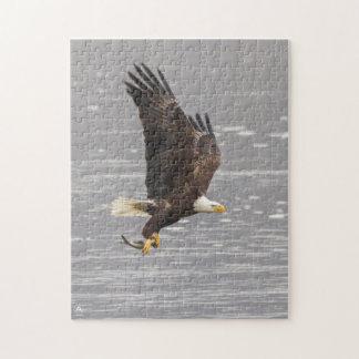 Amerikanischer Weißkopfseeadler Puzzle