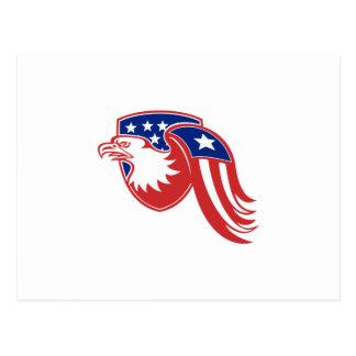 Amerikanisches Adler-US Flagge-Flaggen-Schild Postkarte