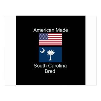 """Amerikanisches geborenes. South Carolina Postkarte"