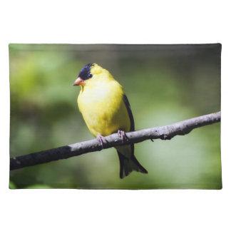 Amerikanisches Goldfinch-Stoff-Tischset Tischset