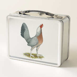 Amerikanisches Spiel-Henne-Silber-Blau Metall Lunch Box