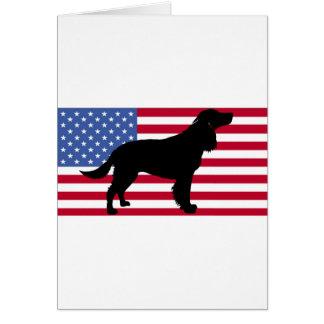 amerikanisches Wasser Spaniel-Silhouetteflagge Karte