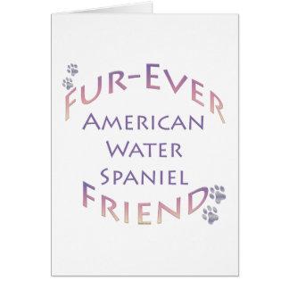 Amerikanisches WasserSpaniel Furever Karte