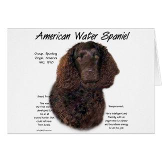 Amerikanisches Wasserspaniel-Geschichtsentwurf Karte